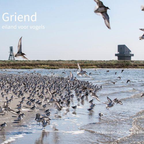 fotoboek Griend –eiland voor vogels