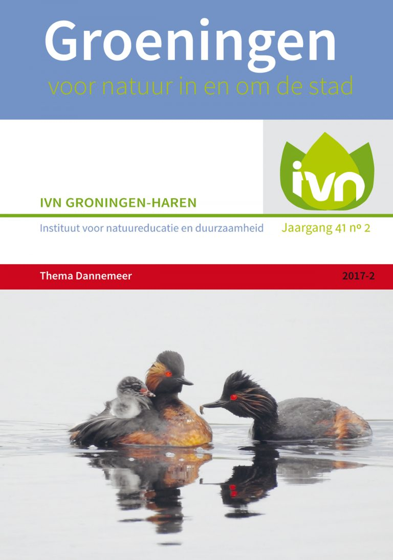 omslGroeningen2017-2