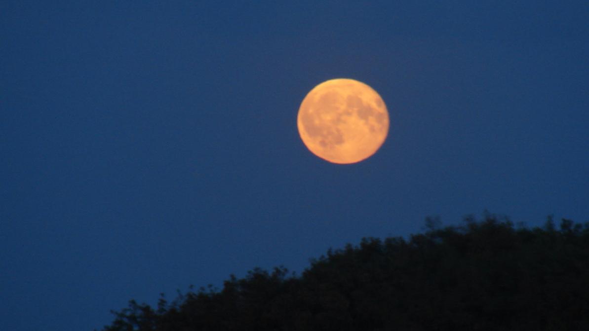 TS-Moon-DSC07444